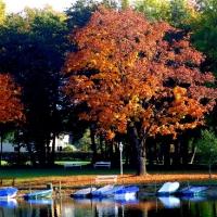 Herbstimpressionen vom Millstätter See_7