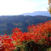 Herbstimpressionen vom Millstätter See_9