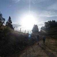 Morgenwanderung zur Lammersdorfer Hütte