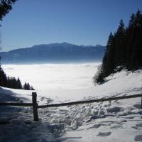 Winter am Millstätter See_3