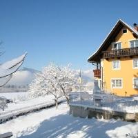 Winter am Millstätter See_5
