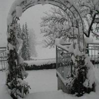 Winterstimmung_3