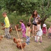 Wir besuchen den Bauernhof